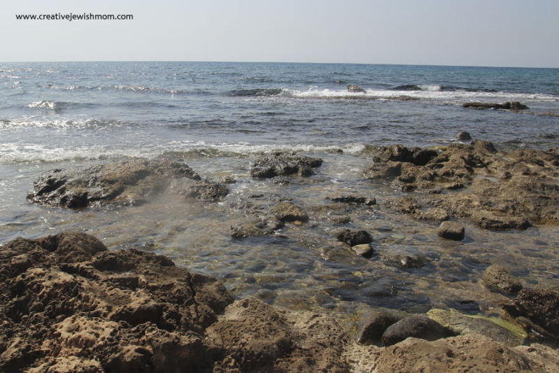 Achziv tide pools israel