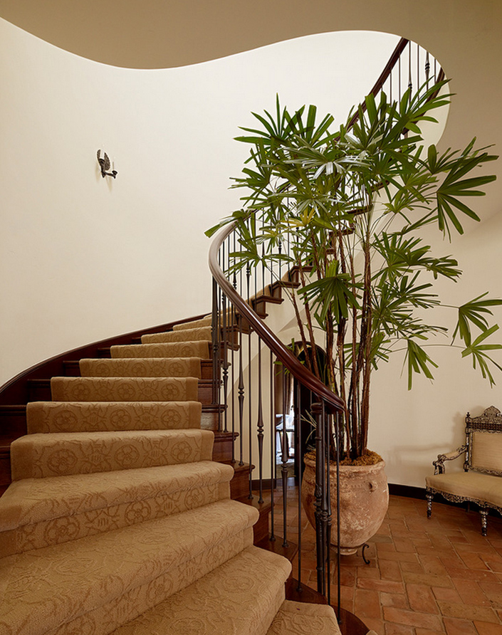 Plant Decor For Party Lady Palm