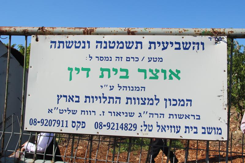 Bircat HaElanot Otzer Bais Din sign
