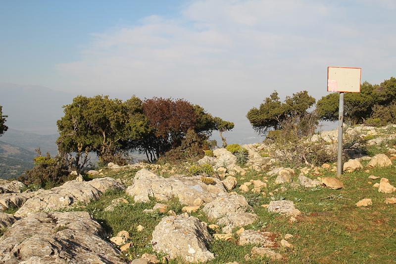 Israel Vacation Dalton Tanna almost there
