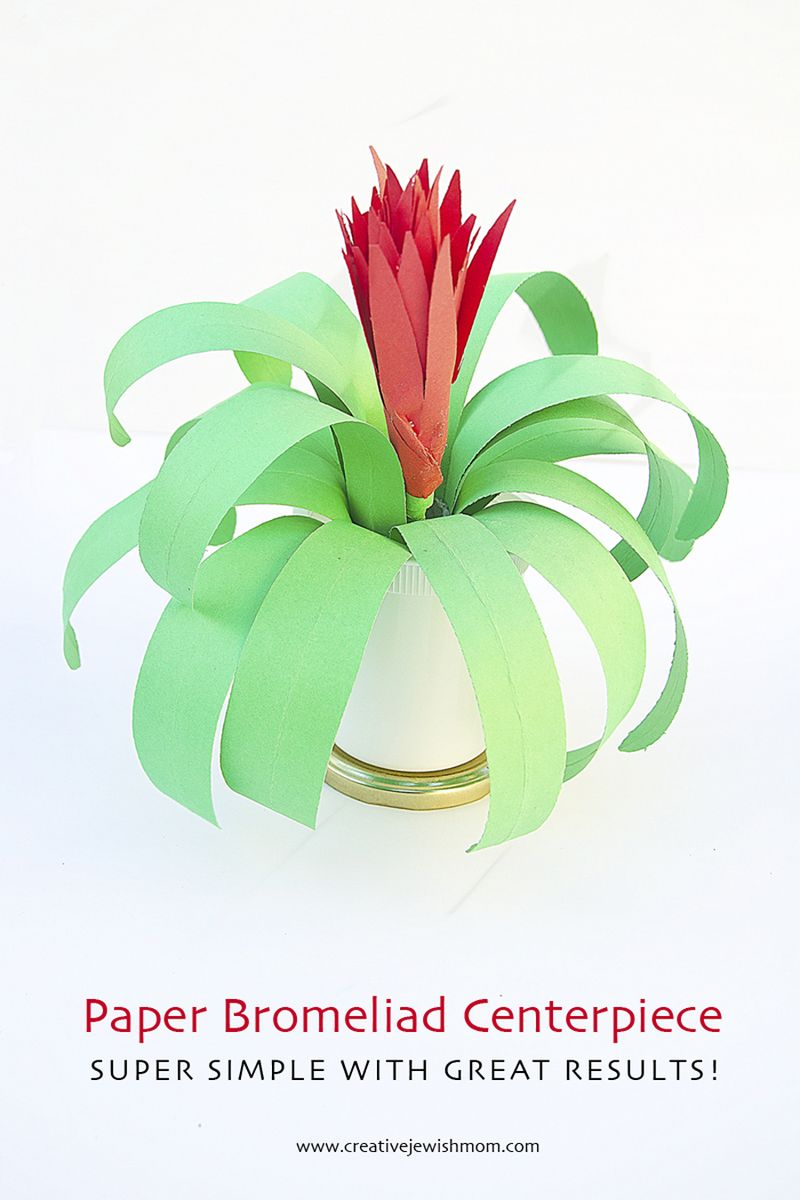 Paper Plant Bromeliad Party Centerpiece