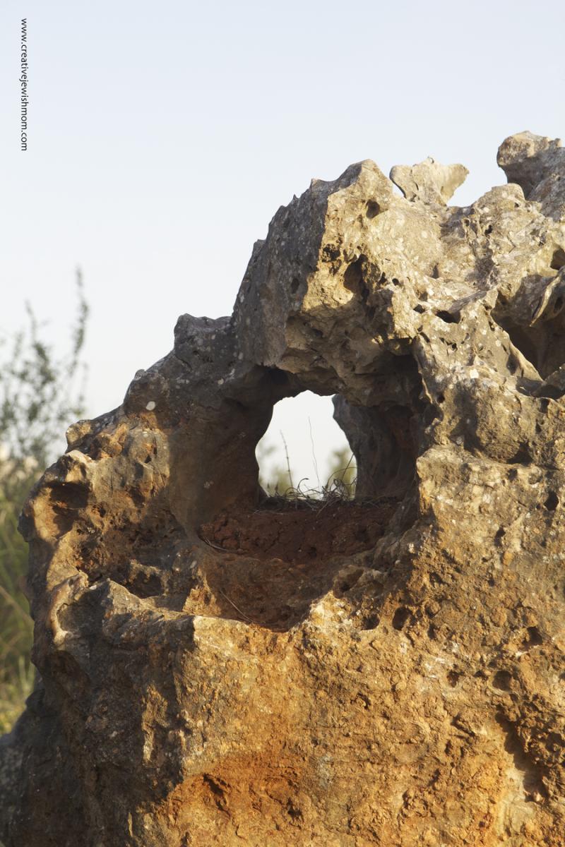 Gravesite Rabbi Shimon Ben Menasia Rock with hole close up