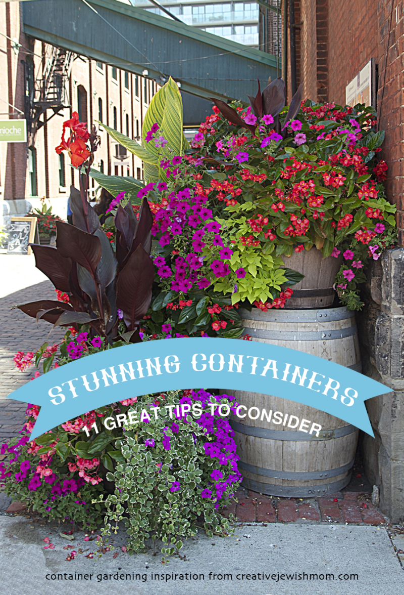 Stunning Containers Eleven Great Tips
