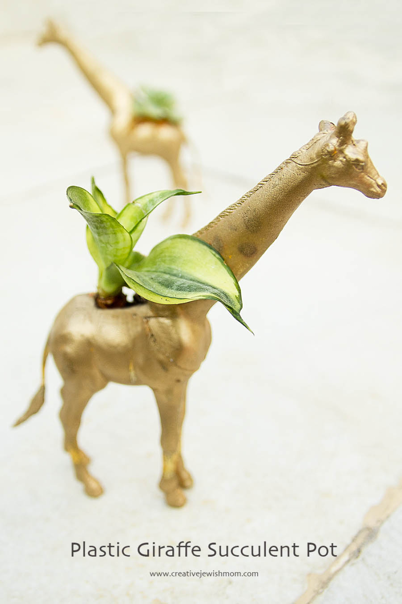 Plastic Animal Succulent Pot