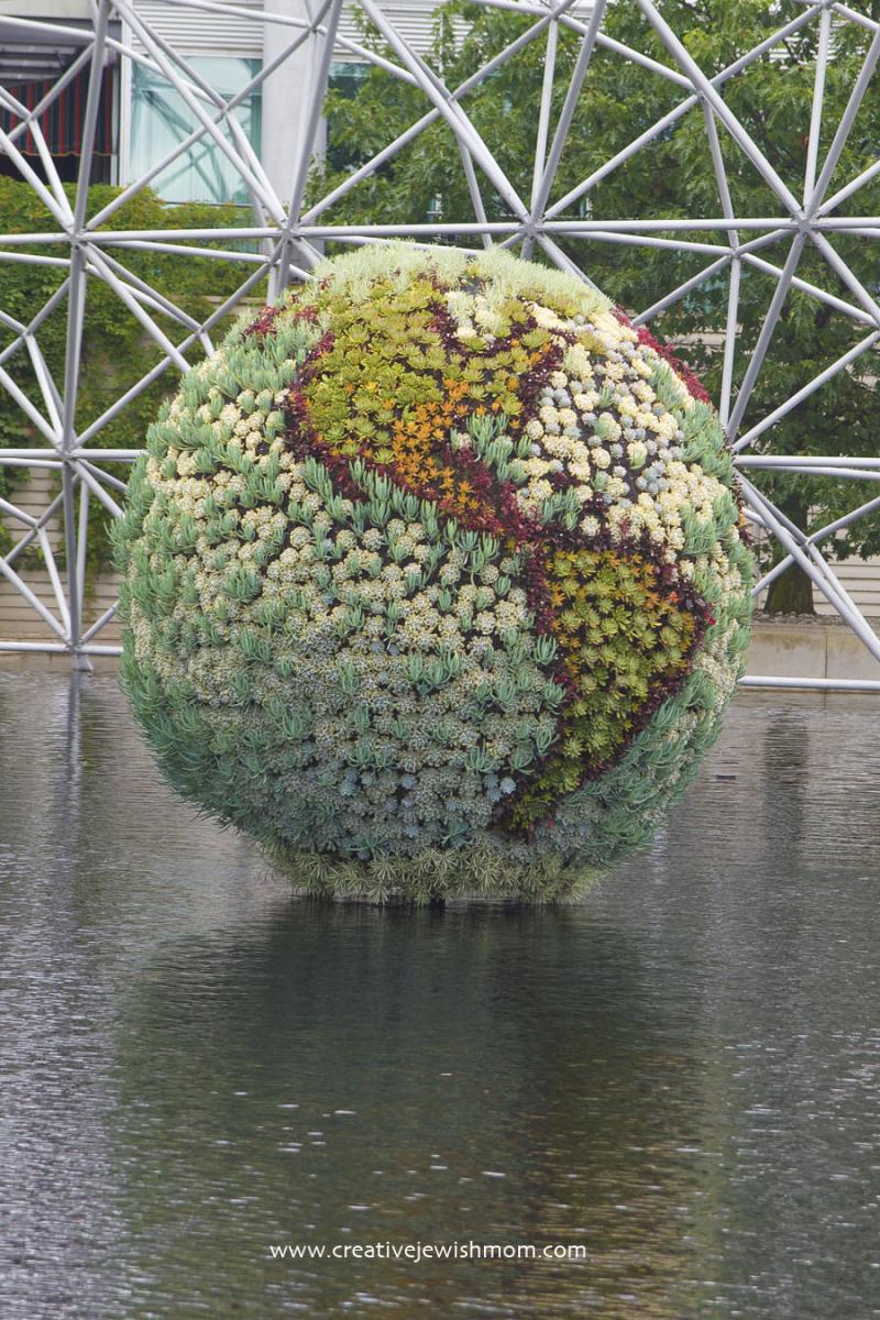 Montreal Biosphere Succulent Globe
