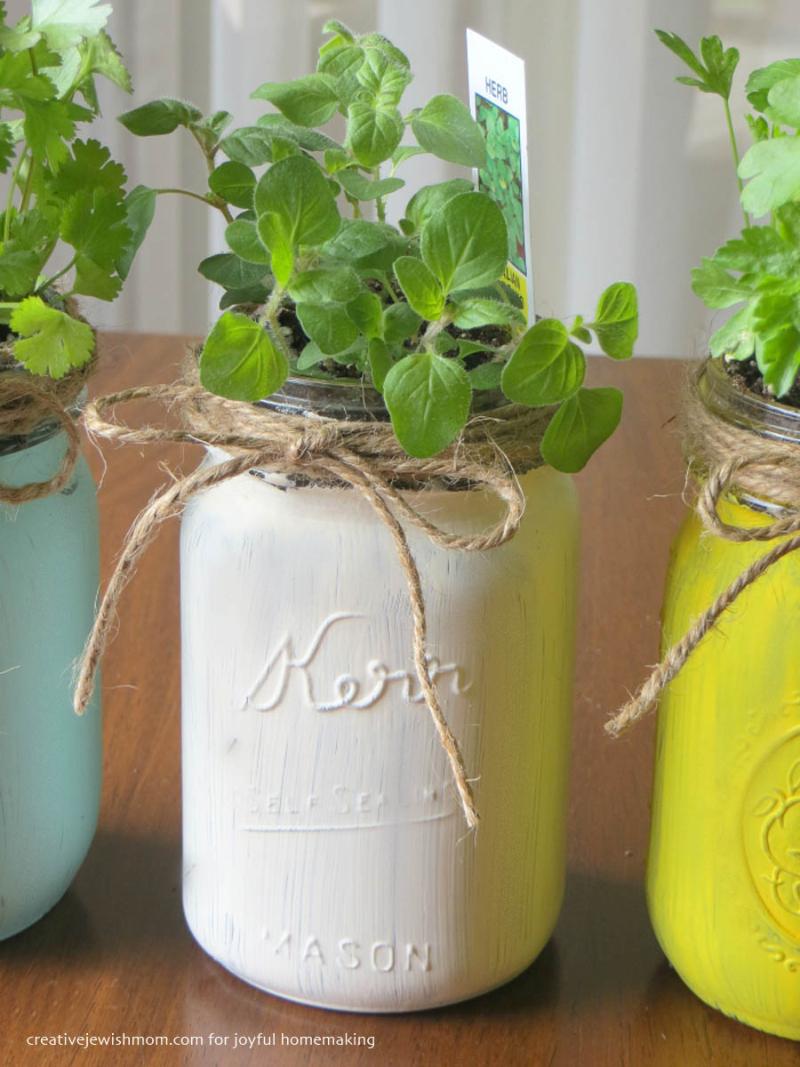 Mason jar herb garden DIY