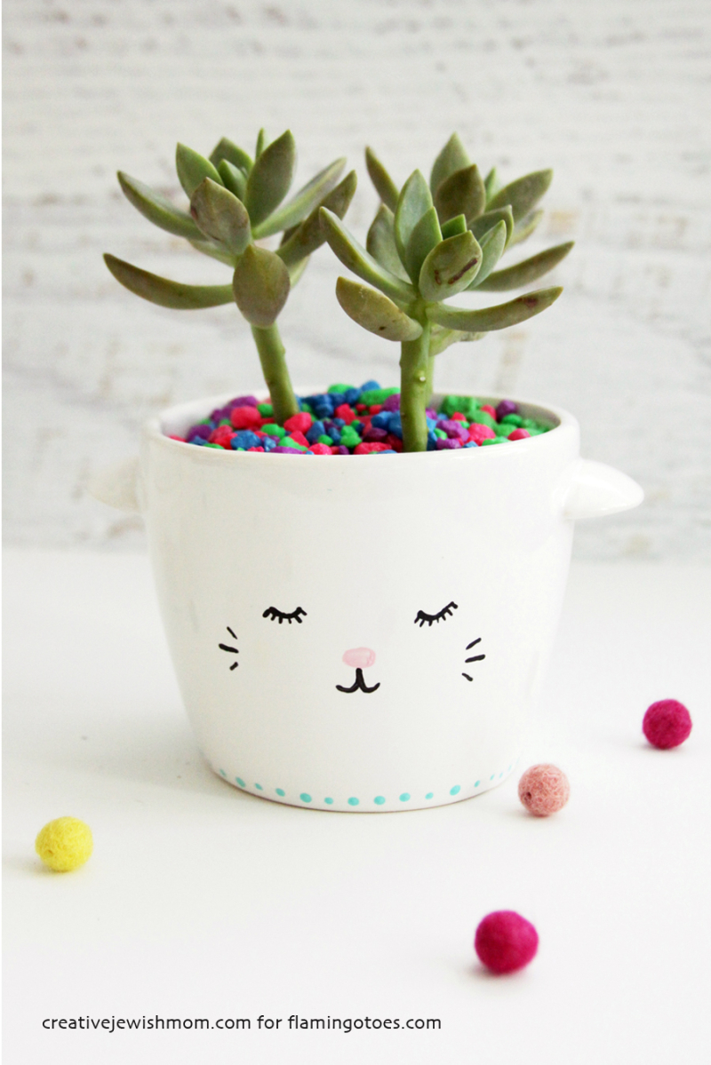 Kitten face planter