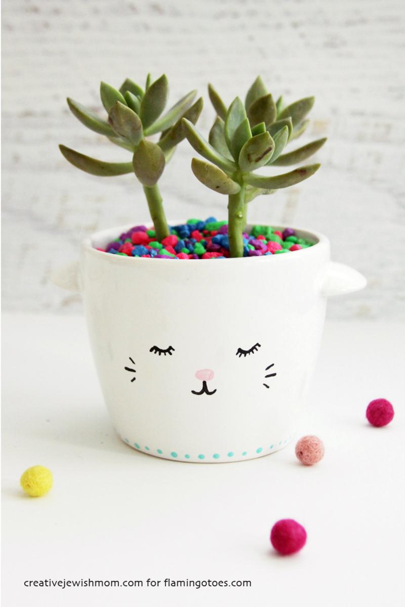 Kitten face planter