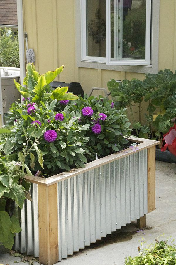 Raised Garden Beds With Corrugated Metal Siding On The