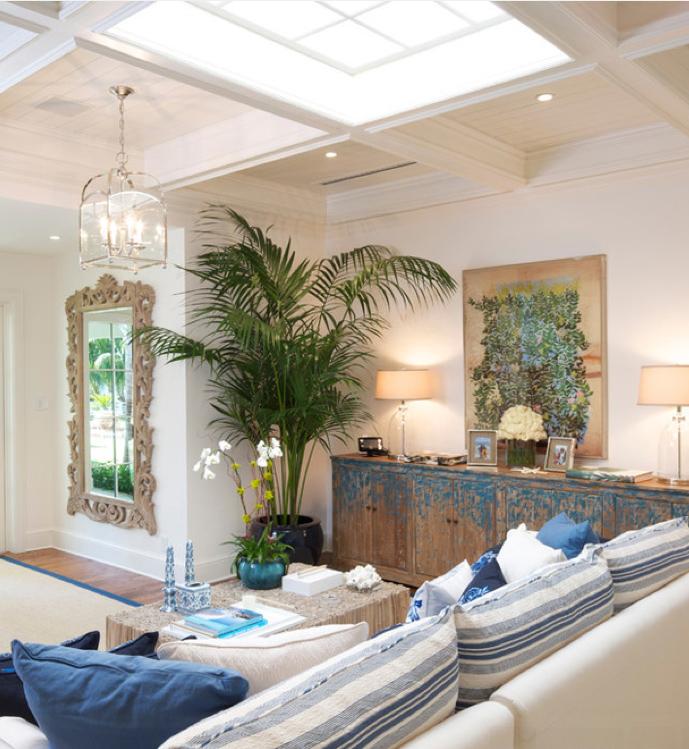 Plants as props, palm