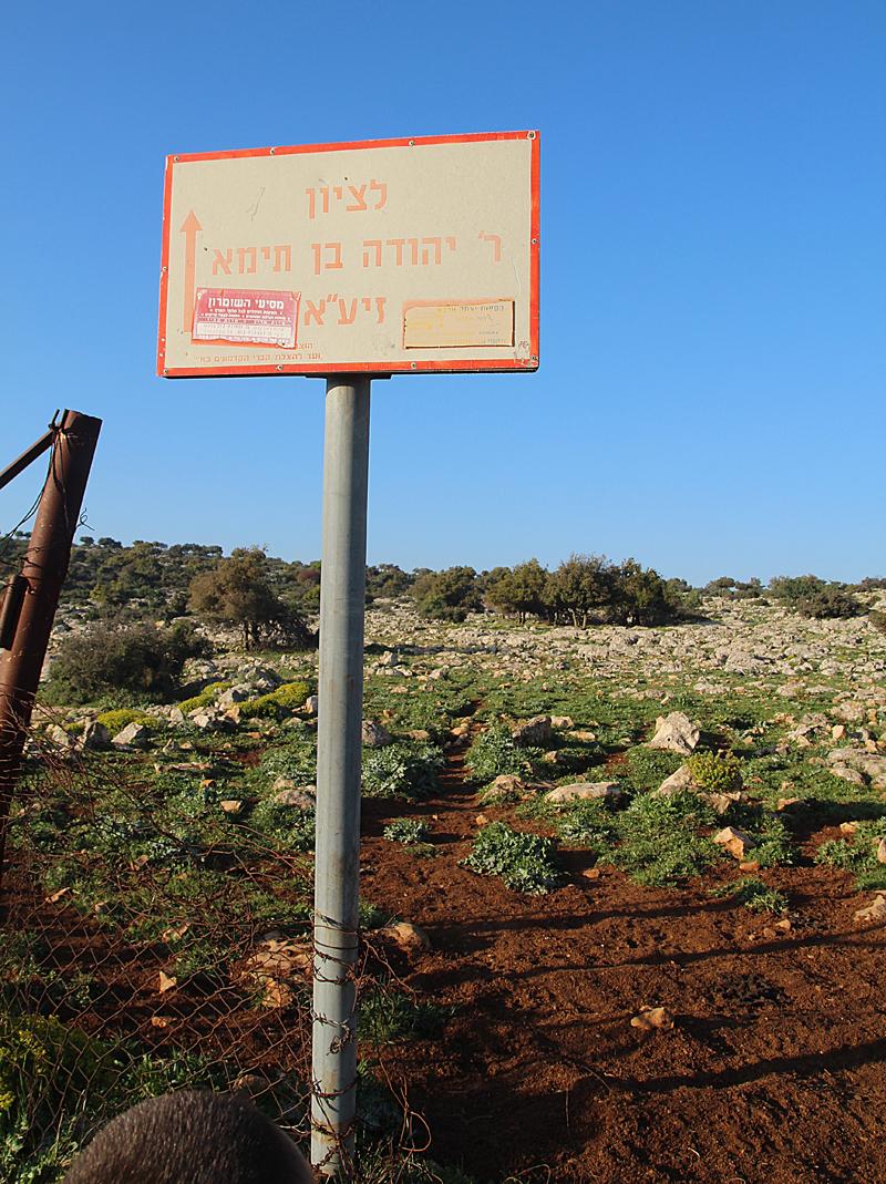 Israel Vacation Dalton Yehuda Ben Taima First Sign