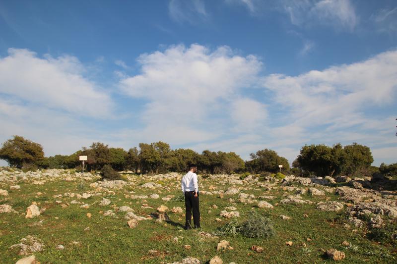 Israel Vacation Dalton Yehuda Ben Taima Signs
