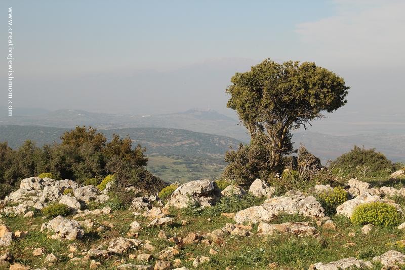 Israel Vacation Dalton, View on path to Tanna