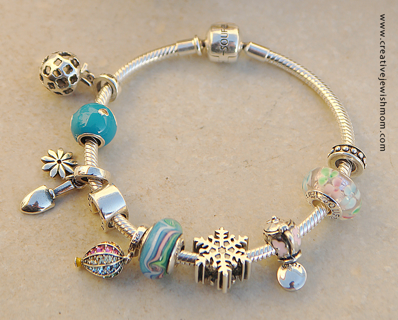 Charm Bracelet Close Up