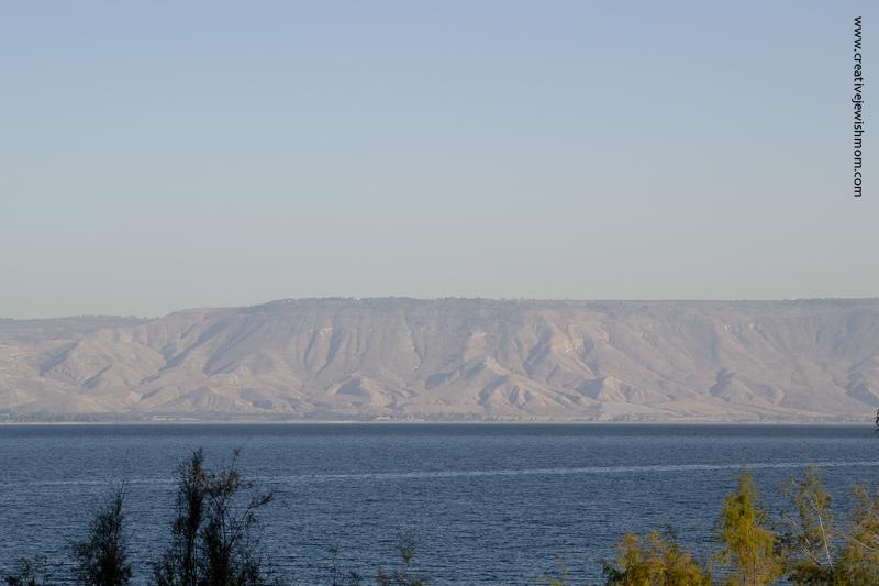 Tiberius Lake Close Up Of Ramat HaGolan