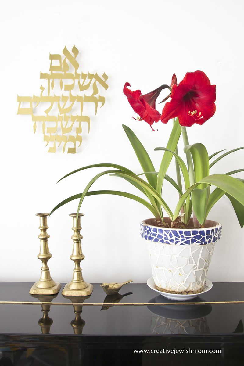 Remembering Jerusalem With Amaryllis in Bloom