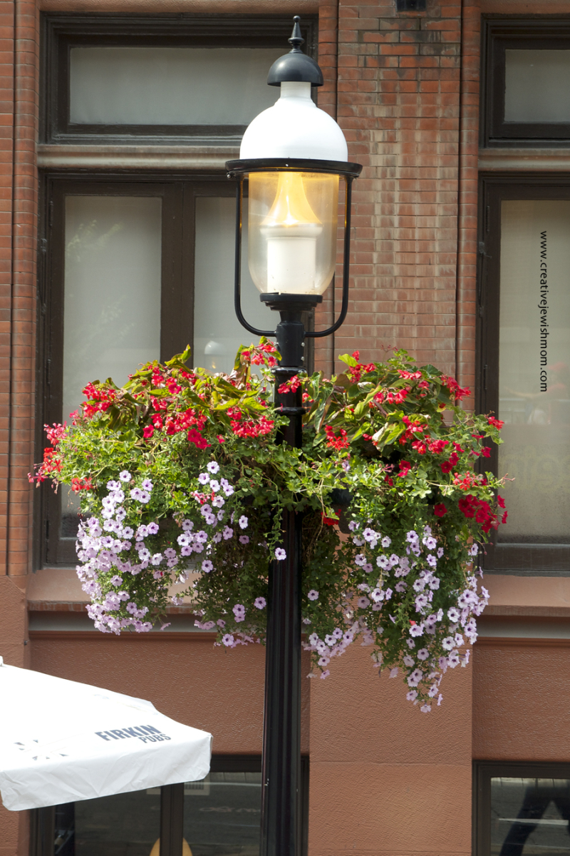 Toronto Container Garden on a light post