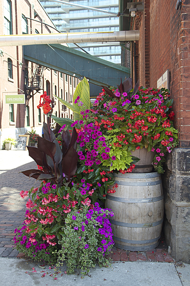 Toronto Containers Using Barrels