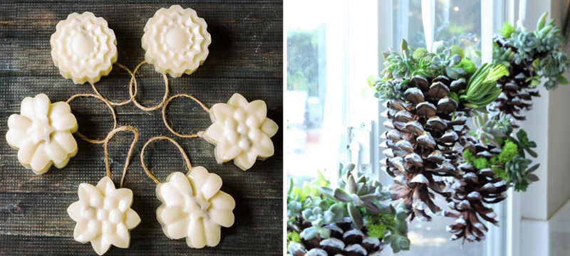 Beeswax ornaments,succulents in pine cones