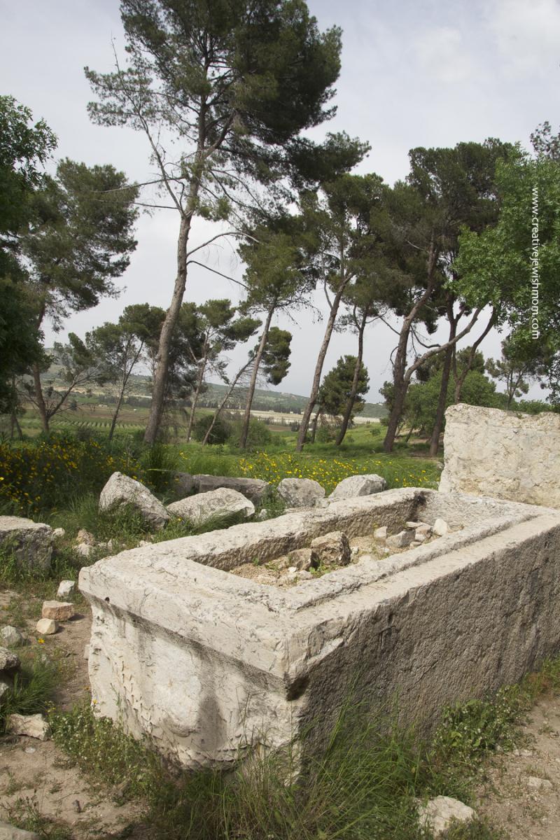 Devorah Burial Site Tel Kedesh Israel