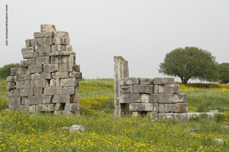 Tel Kedesh Israel Roman Ruins Archeology