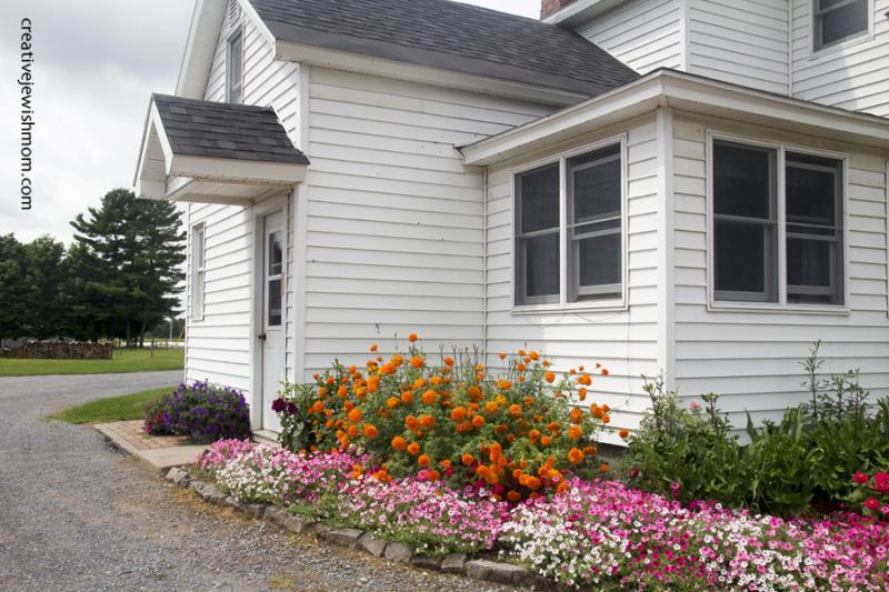 Croghan New York Mennonite Home