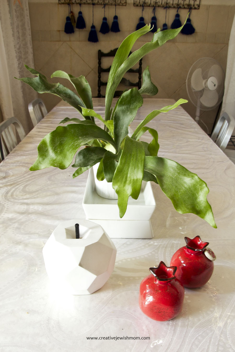 Staghorn Fern Centerpiece