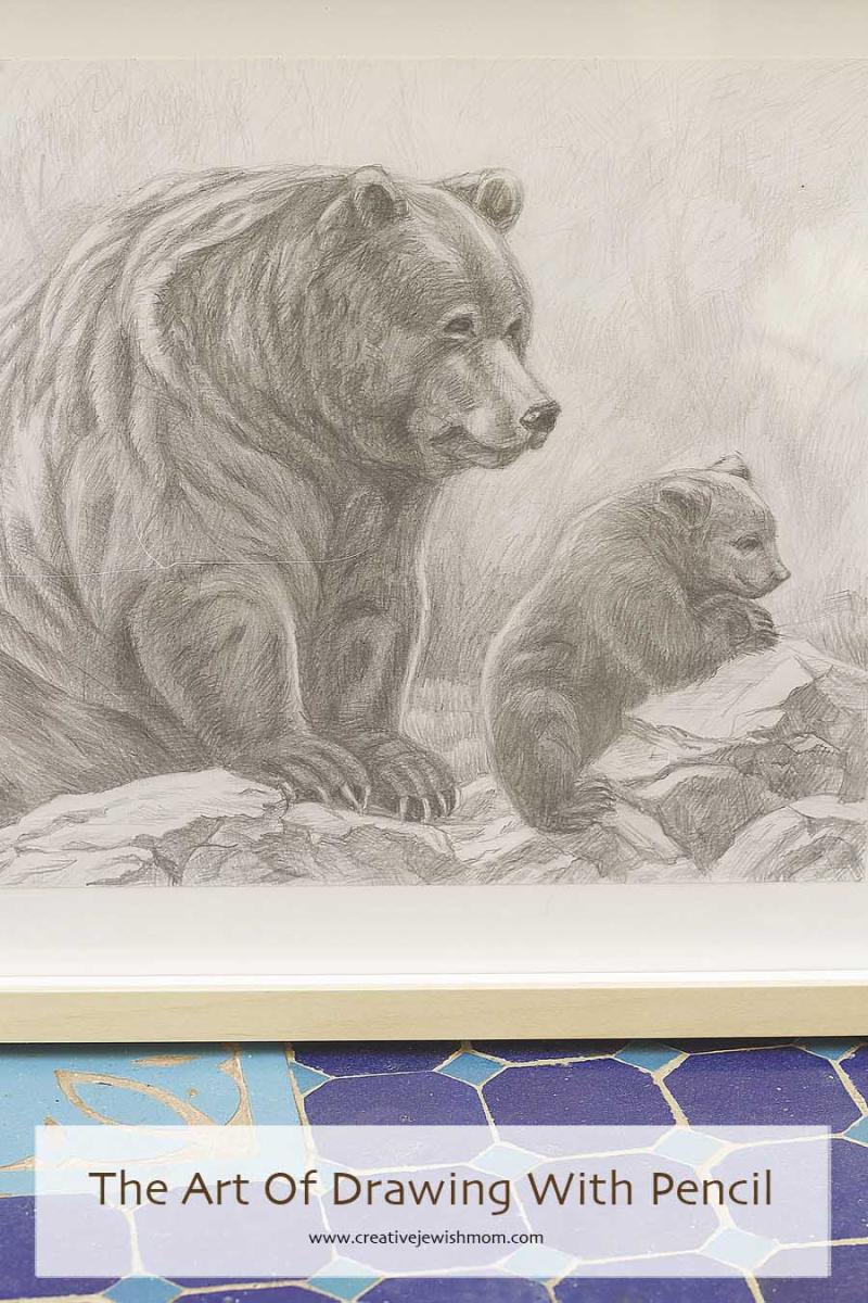 Pencil Drawing Bear Close Up