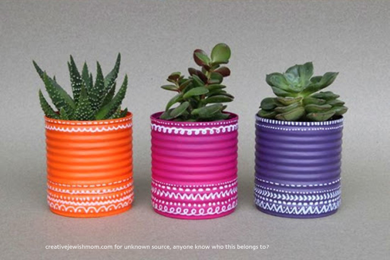 Diy-pots-from-tin-cans-with-white-paint-pen