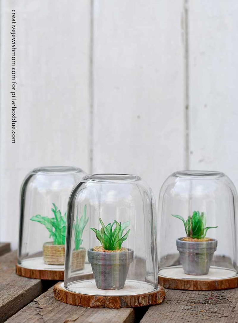 Plastic-bottle-mini-faux-succulents-terrariums