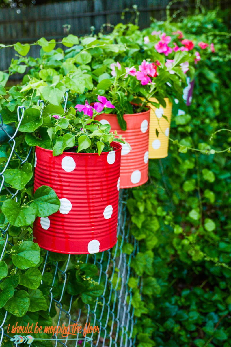 Polka-dot-tin-can-planters