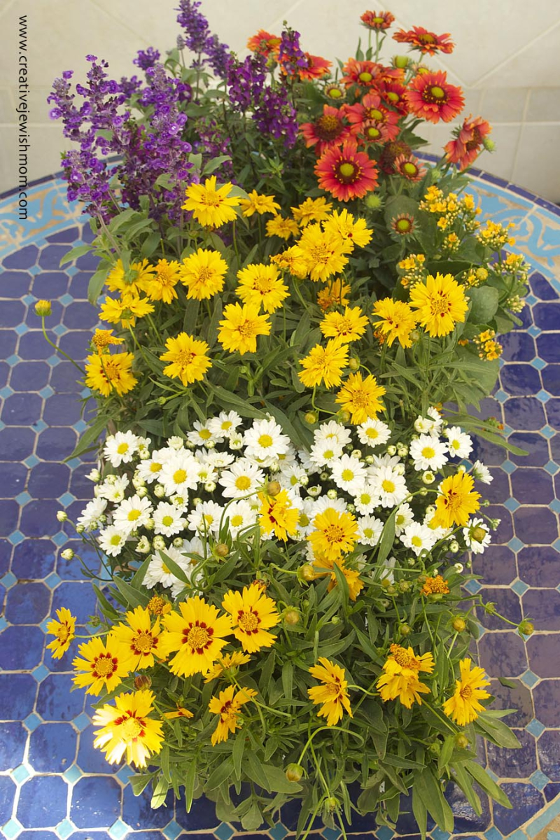 Colorful floral centerpiece from cheap plants