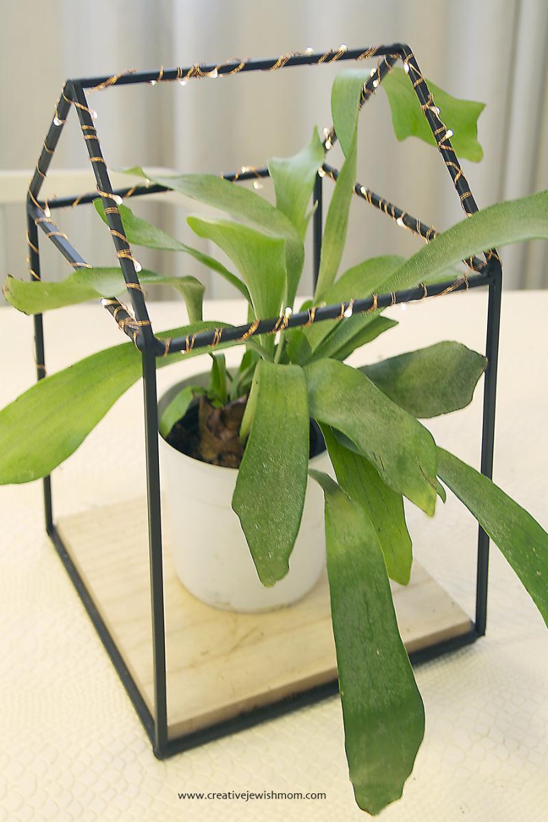 Mason-jar-string-lght-Staghorn-fern-centerpiece