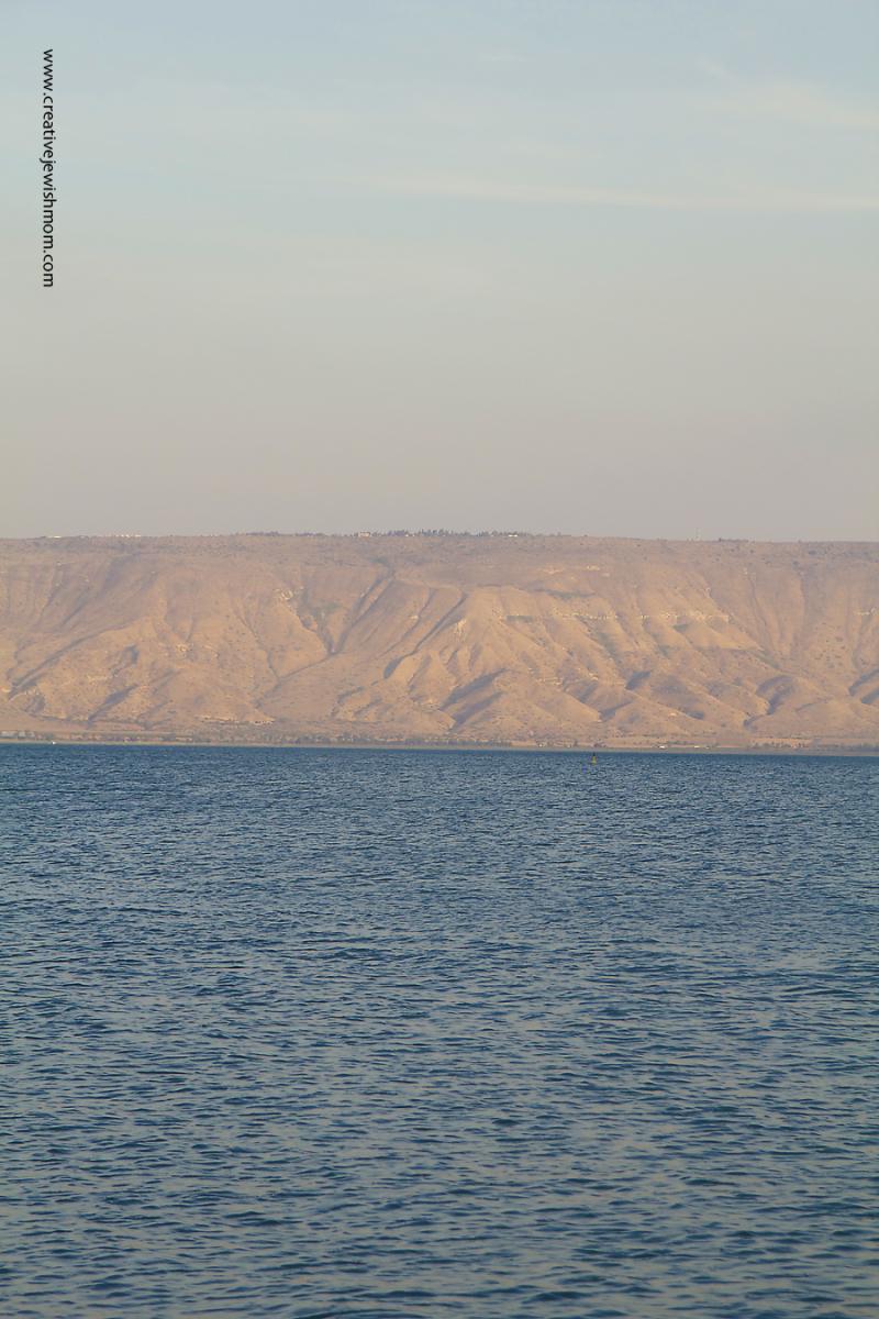 Lake Tiberius And Golan Heights