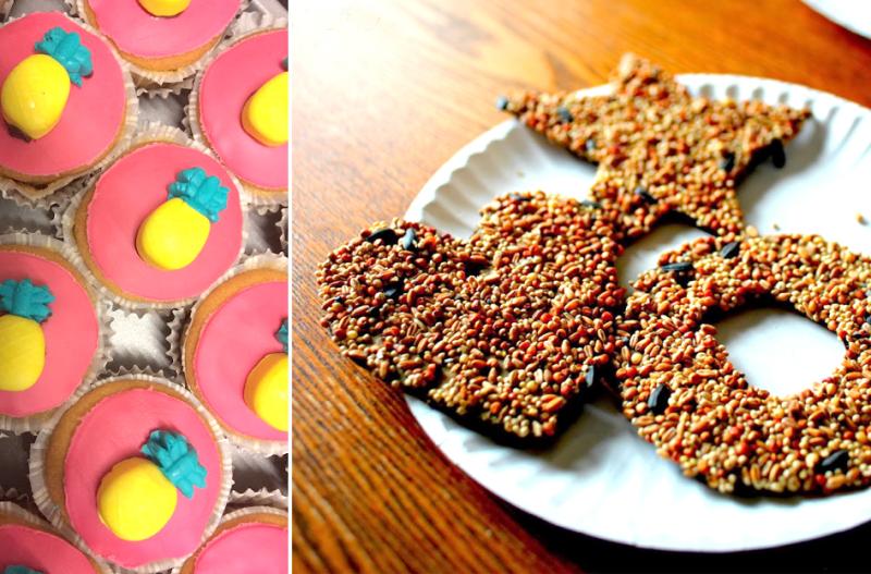 DIY hearts and stars bird feeder pineapple cupcakes