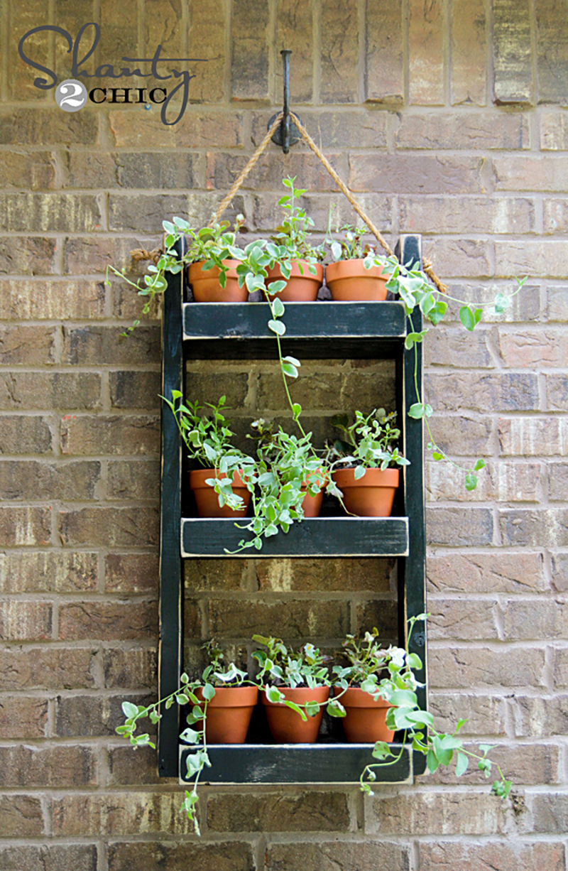 DIY-hanging-plant-shelf