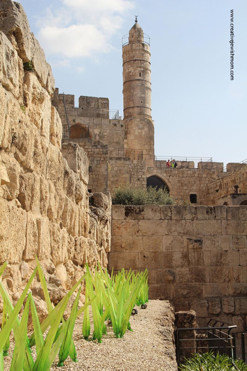 Dale-Chihuly-Glass-Plants-Jerusalem