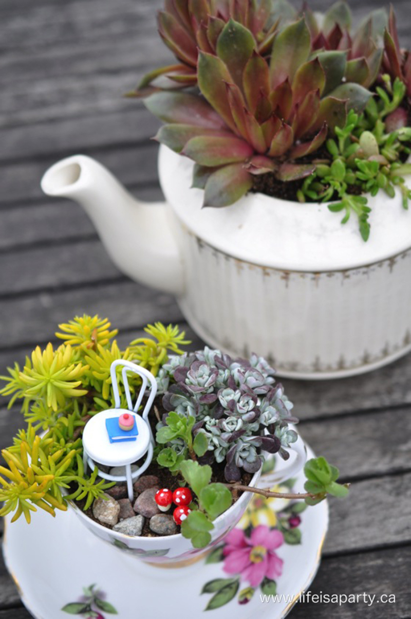 Teacup-fairy-garden-with-teapot