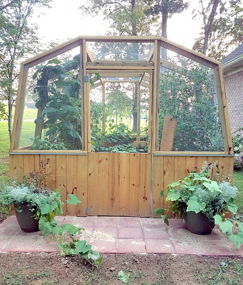 DIY-screened-veggetable-beds-greenhouse