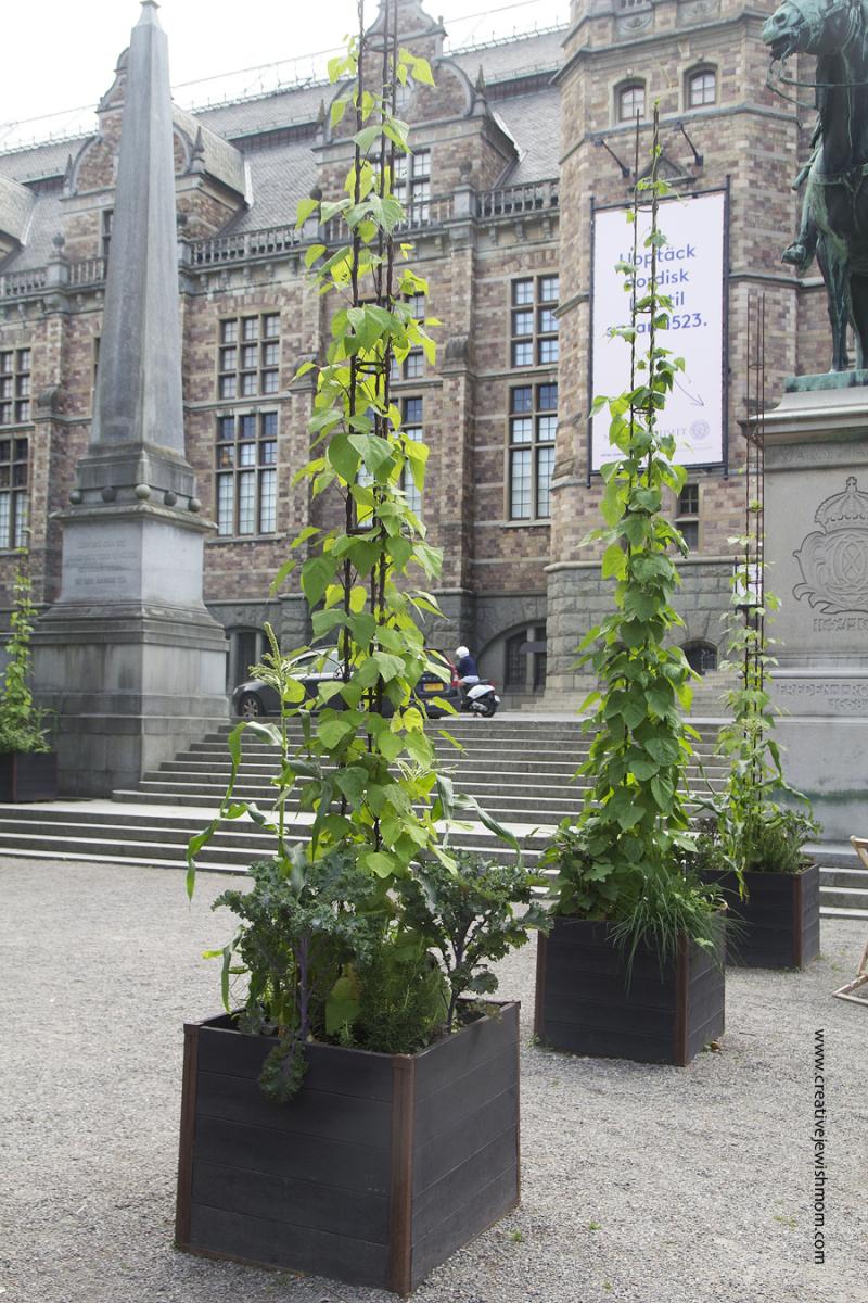 Stockholm-Nordic-Museum-summer-planters