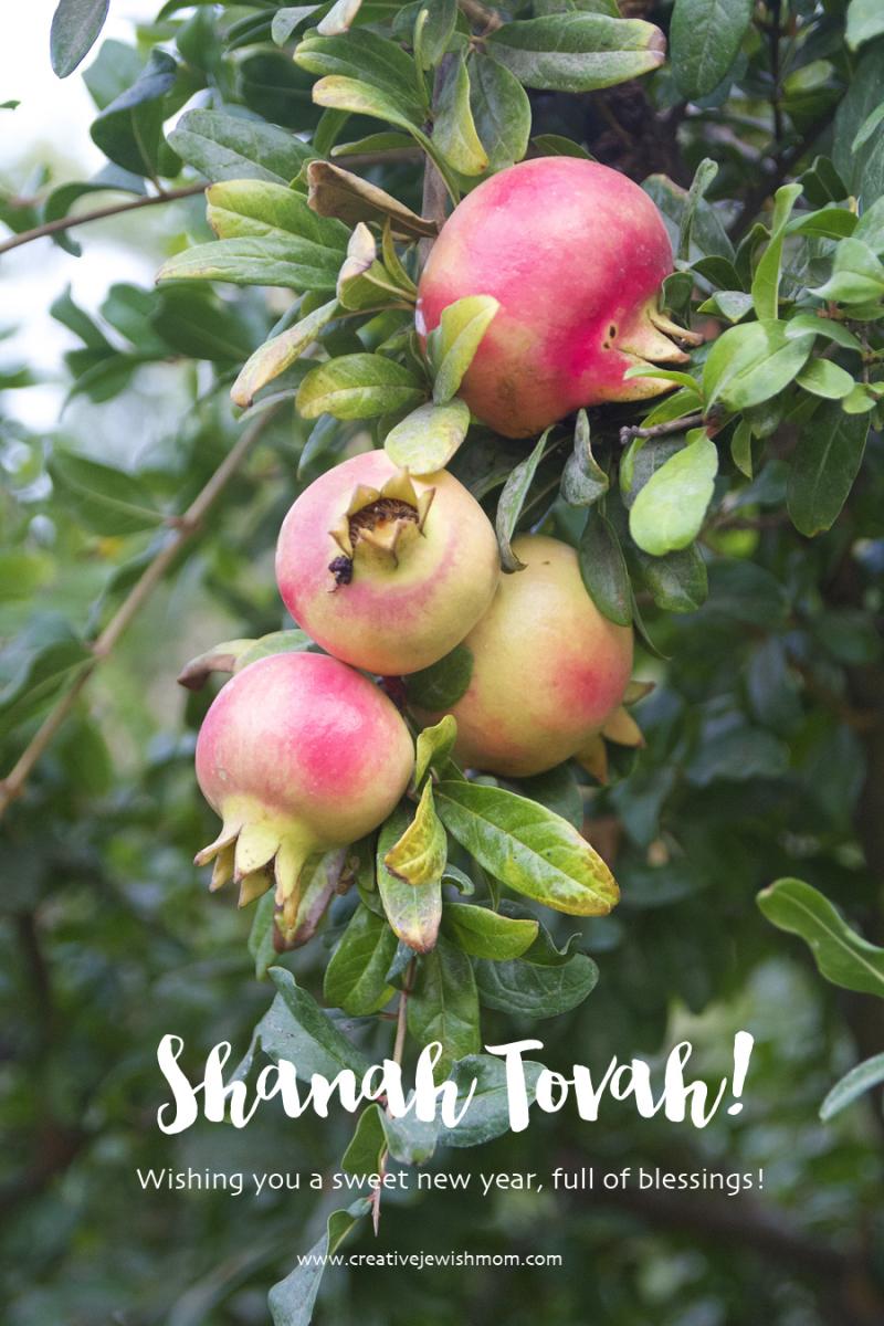 Shanah-tovah-pomegranites