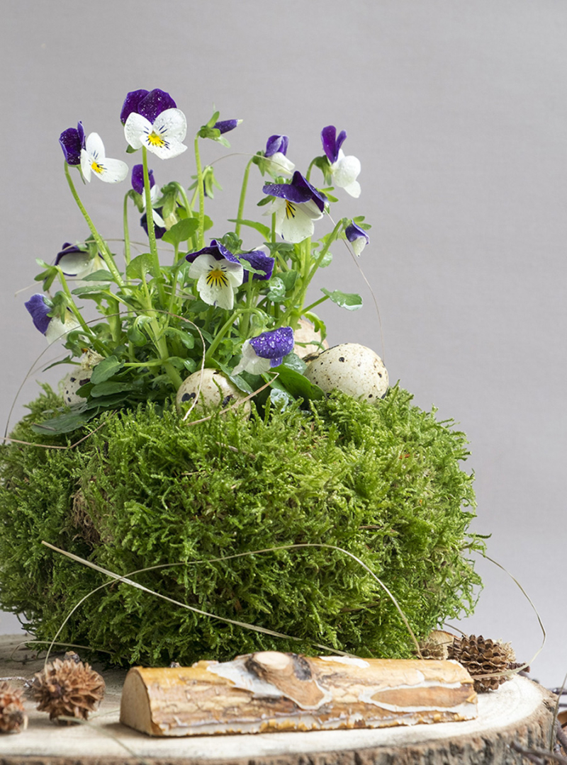 Spring-centerpiece-quail-eggs-moss-flowers