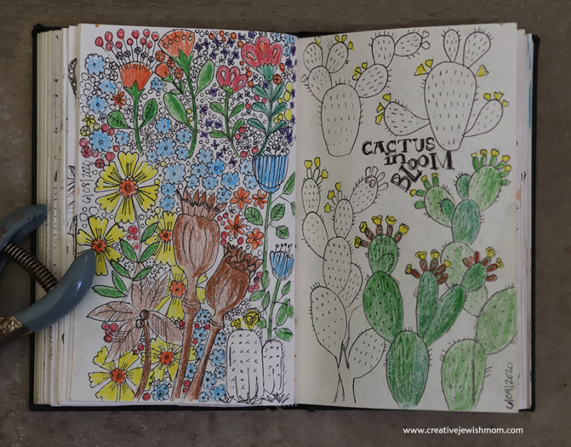 Sketchbook-cactus-colored-pencil