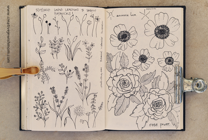 Sketchbook branches and flowers