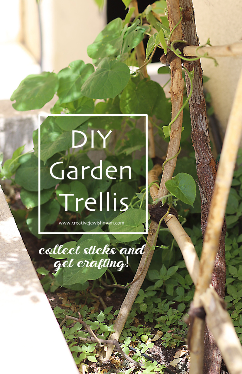DIY-garden-trellis-from-sticks