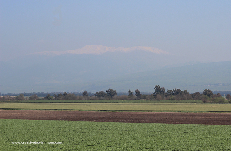 Israel-snow-mountaintop-2021