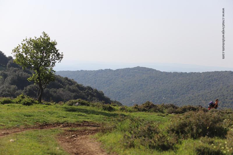 Israel-meron-rain-pool-and-hill