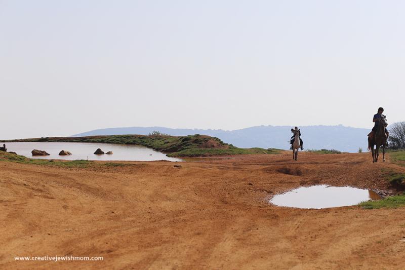 Israel-meron-rain-pool-landscape