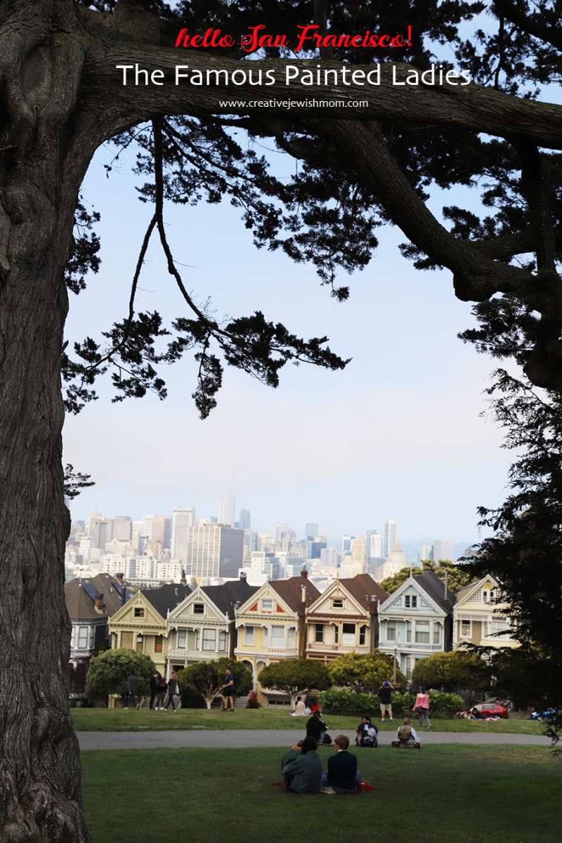 San-francisco-painted-ladies-with-tree-silhouette