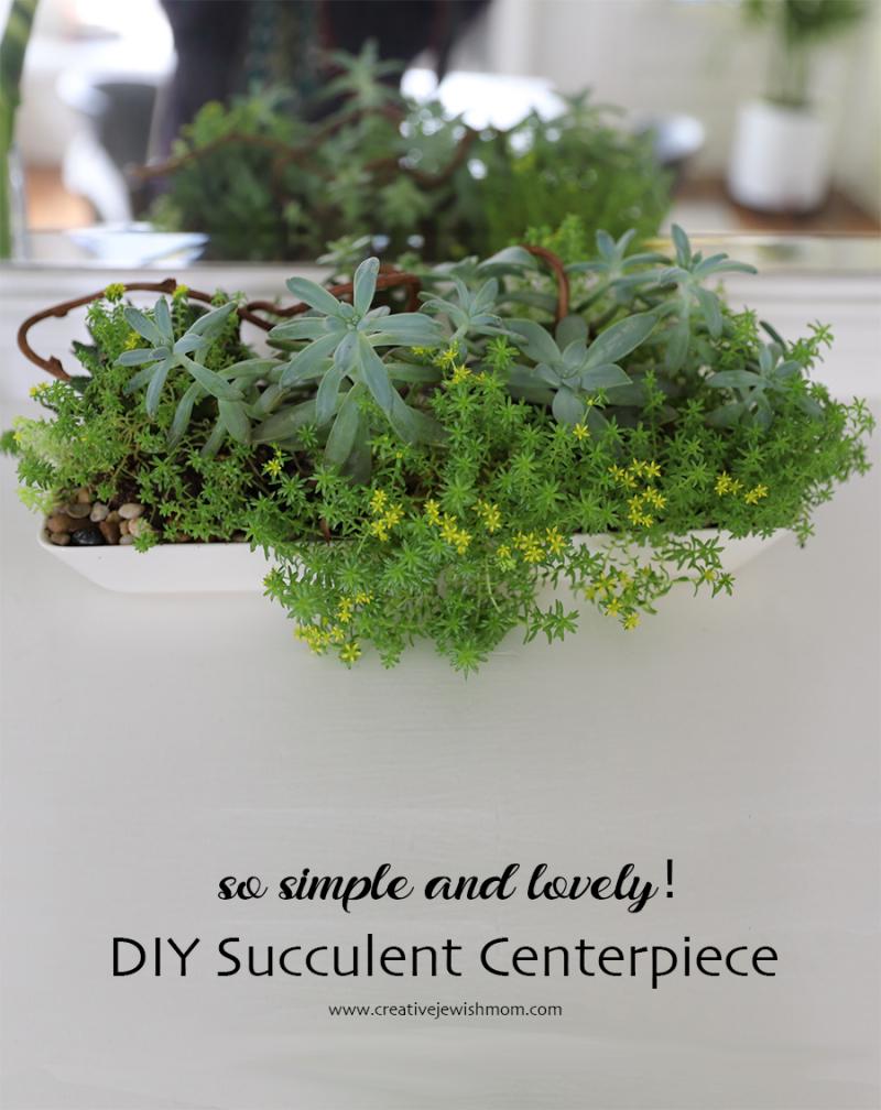 DIY-oblong-succulent-centerpiece
